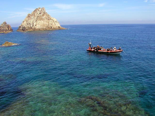 Haliotis Dive Center - Dive Center in Portugal